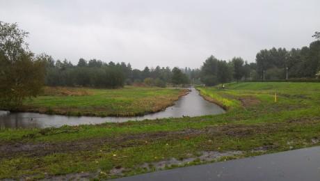 Westerpark oktober 2013